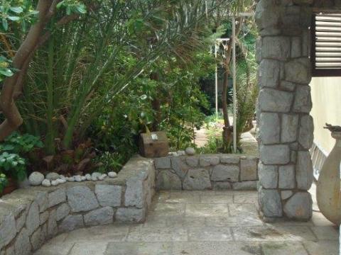 Die Wohnungterrasse ist von mediterranen Pflantzen umgeben